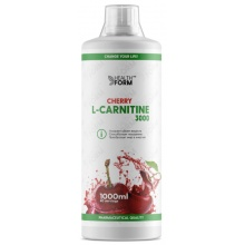 Л-Карнитин Health Form L-Carnitine concentrate 3000 1000 мл